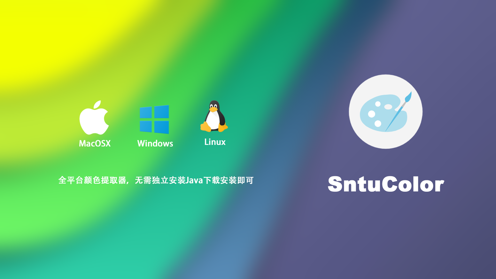 SntuColor广告.png